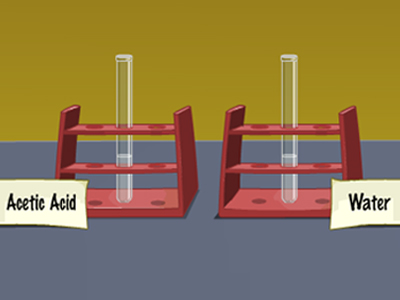 Properties of Acetic Acid (Ethanoic Acid)